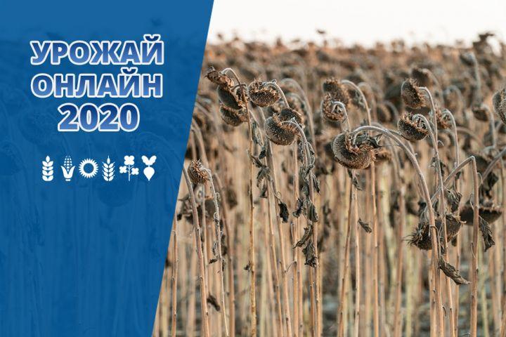 Аграриям осталось убрать 9% площадей под подсолнечником — Урожай Онлайн 2020