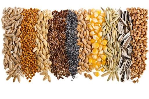 В начале года в Украине существенно вырастут цены на зерновые — мнение