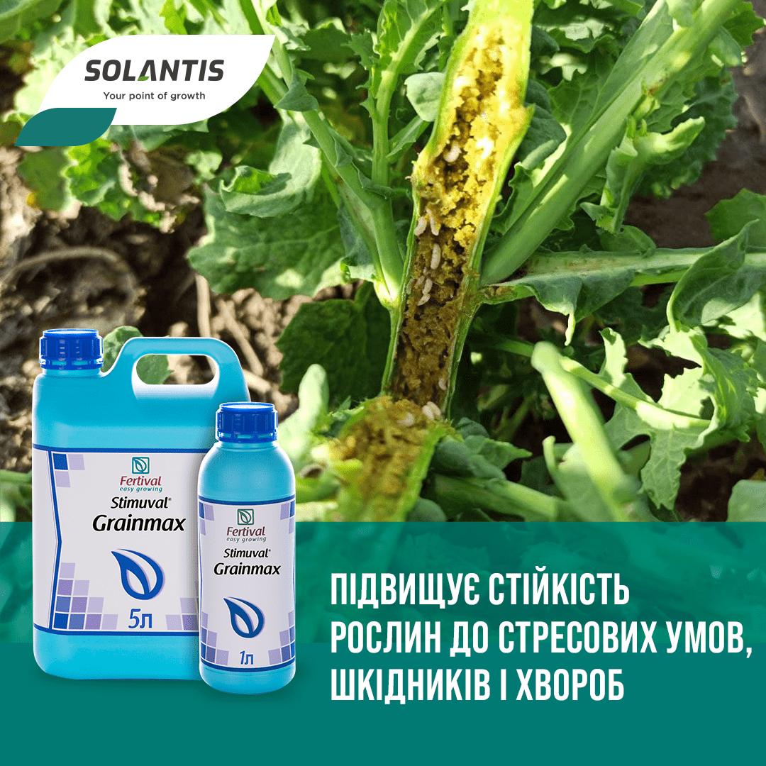 Безопасная обработка растений пестицидами: что необходимо знать?
